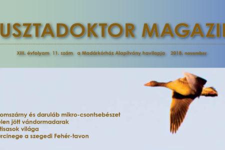 Pusztadoktor Magazin