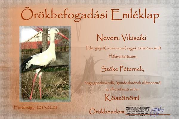 Vikisziki