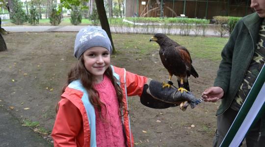 Visszatekintés melegebb időkre: Állatok világnapja a Debreceni Állatkertben