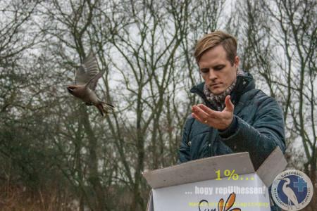 Csempészett madarak szabadon