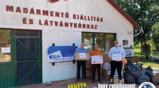 Támogatás az Aegon Magyarországtól