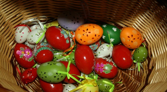 Húsvét a Madárparkban